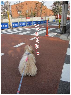 2012-04-23-11.jpg