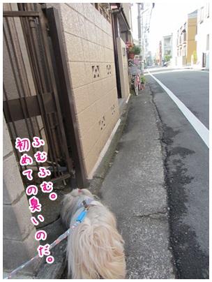 2012-04-27-06.jpg
