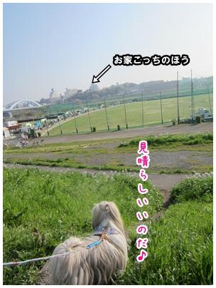 2012-04-27-07.jpg