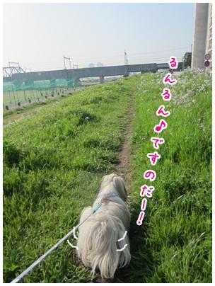 2012-04-27-08.jpg