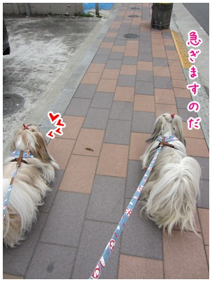 2012-05-02-01.jpg