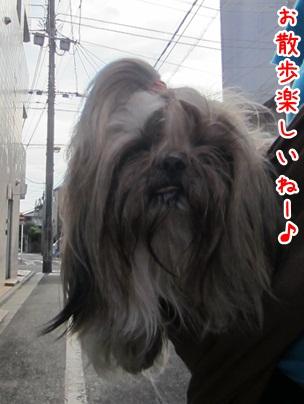 2012-05-03-01.jpg