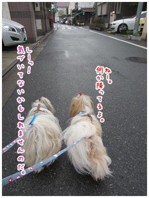 2012-05-04-01.jpg