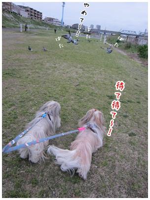 2012-05-10-04.jpg