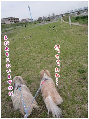 2012-05-10-05.jpg