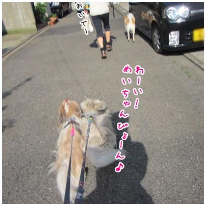 2012-05-24-01.jpg