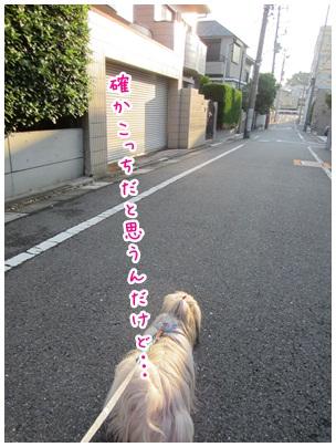 2012-05-30-01.jpg