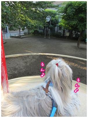 2012-05-30-11.jpg