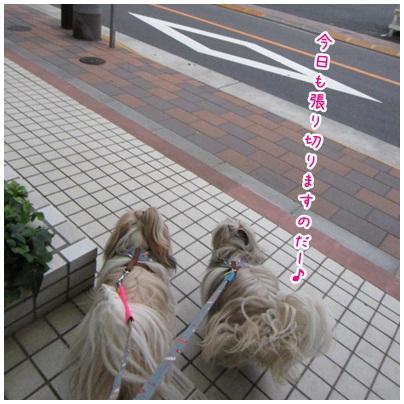 2012-05-31-01.jpg