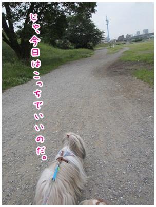 2012-05-31-04.jpg