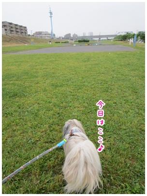 2012-06-03-01.jpg