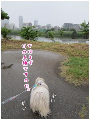 2012-06-03-04.jpg