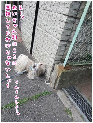 2012-06-05-09.jpg
