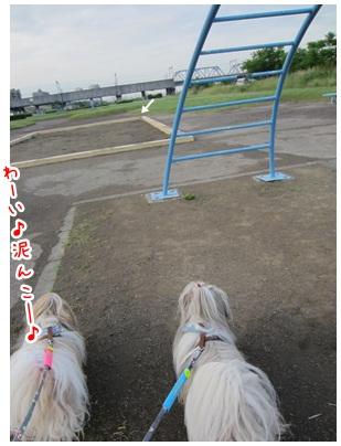 2012-06-08-03.jpg