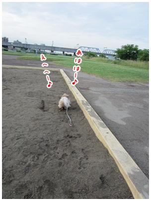 2012-06-08-06.jpg