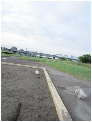 2012-06-08-07.jpg