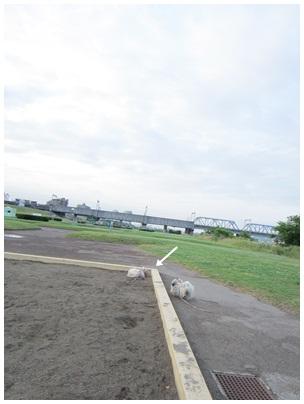 2012-06-08-08.jpg