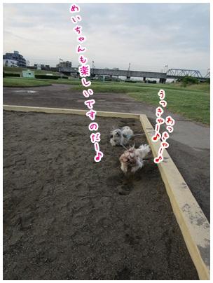 2012-06-08-09.jpg