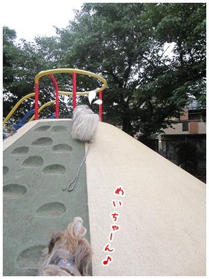 2012-06-25-06.jpg