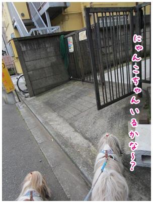2012-06-26-01.jpg
