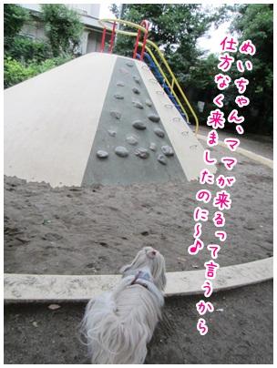 2012-06-27-01.jpg