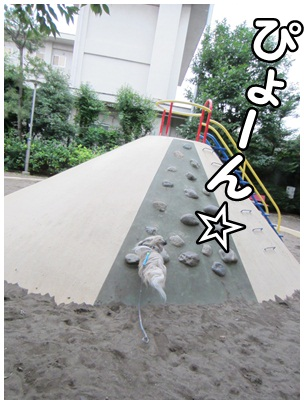 2012-06-27-02.jpg