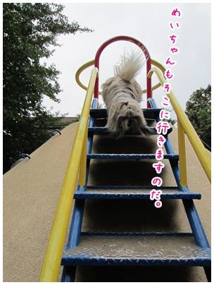 2012-06-28-01.jpg