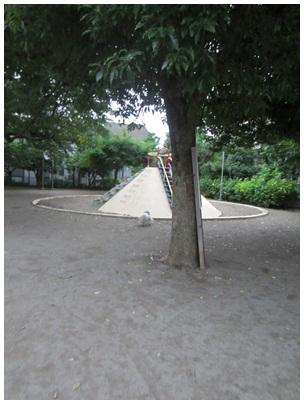 2012-07-03-04.jpg
