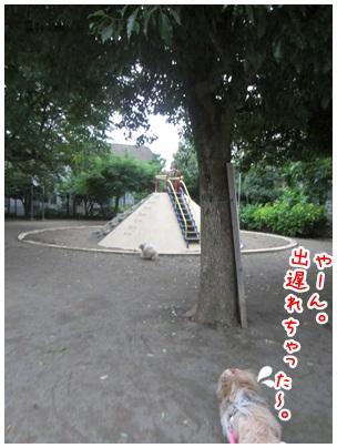 2012-07-03-05.jpg