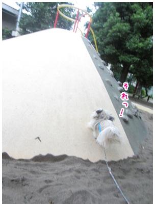 2012-07-03-07.jpg