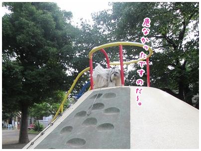 2012-07-04-08.jpg
