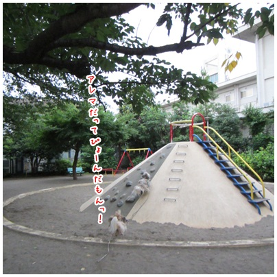 2012-07-08-02.jpg