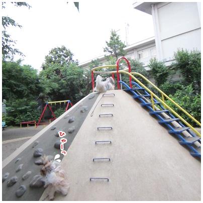 2012-07-08-04.jpg