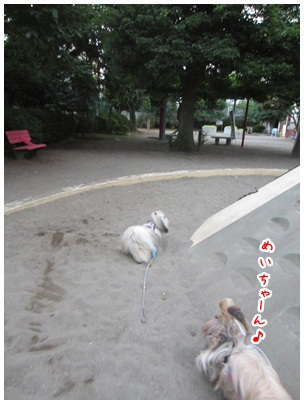 2012-07-10-01.jpg