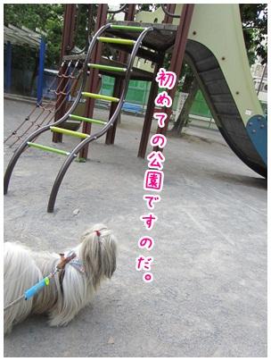 2012-07-11-01.jpg