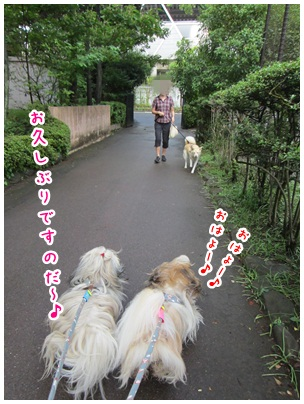 2012-07-13-07.jpg