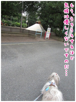 2012-07-14-02.jpg