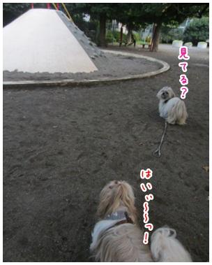 2012-07-20-05.jpg