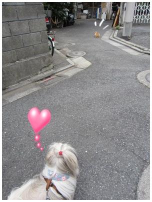 2012-07-21-01.jpg