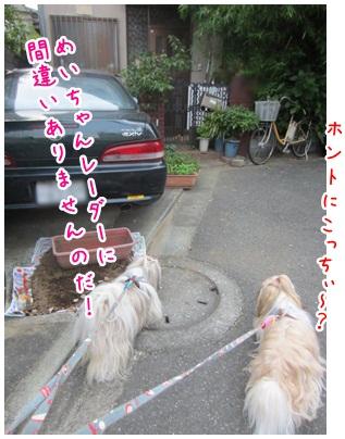 2012-07-21-06.jpg