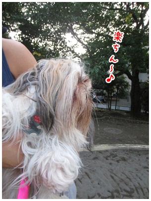 2012-07-23-08_20120711085950.jpg