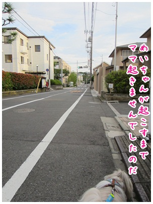 2012-07-26-01.jpg