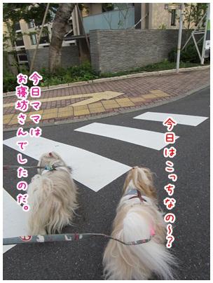 2012-07-26-04.jpg