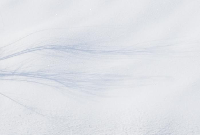 雪・・・1