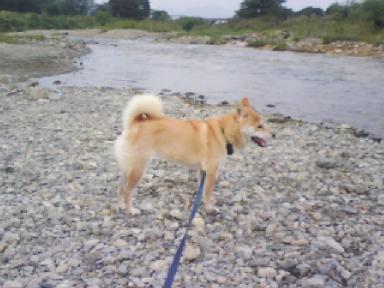 鶴巻で水遊び