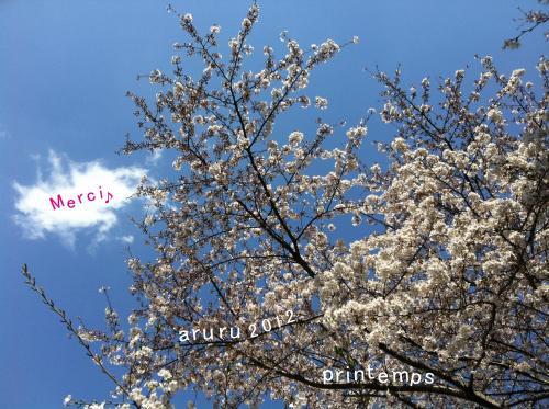 printemps_convert_20120405164728.jpg