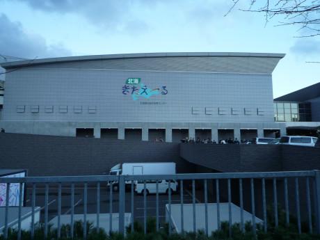yazawa-1.jpg