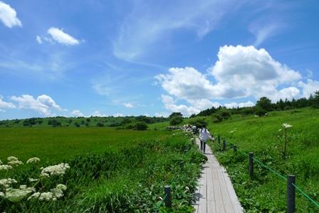 八島ヶ岳湿原
