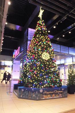 クリスマスツリー 001