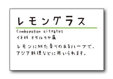 フォント変えパターン1